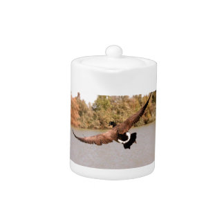 flying duck over water photograph teapot
