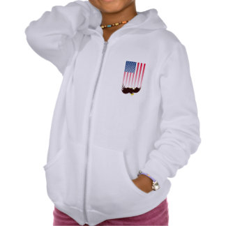 Flying Eagle And American Flag Hoody
