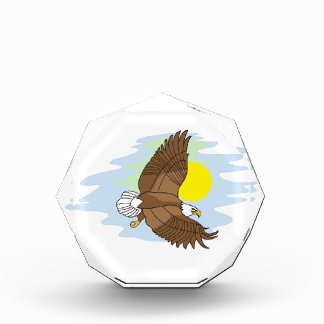 Flying Eagle Award