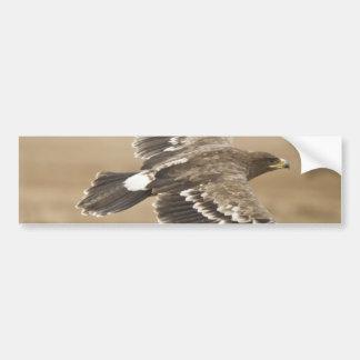 Flying Eagle Bird Bumper Sticker