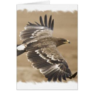 Flying Eagle Bird Greeting Card