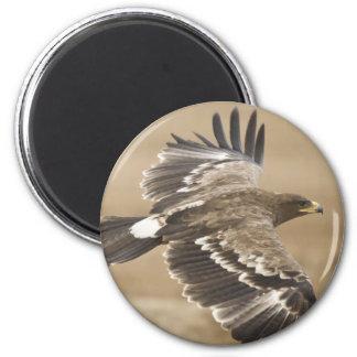 Flying Eagle Bird Round Magnet Fridge Magnet