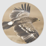 Flying Eagle Bird Sticker