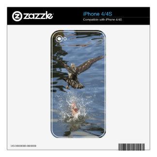 Flying Eagle Fishing 6 Wildlife iPhone 4 Skin