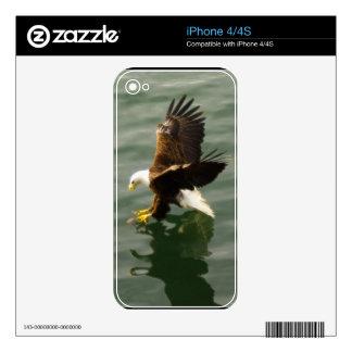 Flying Eagle Fishing Wildlife iPhone 4 Skin
