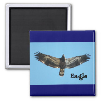 Flying Eagle Magnet