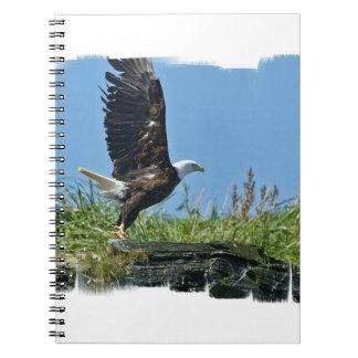 Flying Eagle Notebook
