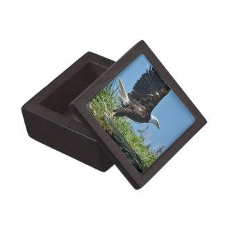 Flying Eagle Premium Gift Box