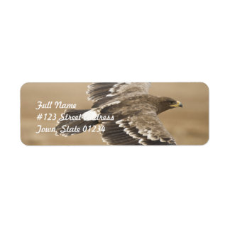 Flying Eagle Return Address Mailing Label