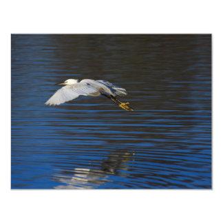 "Flying Egret 4.25"" X 5.5"" Invitation Card"