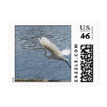 Flying Egret Postage