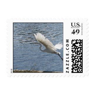 Flying Egret Postage Stamps