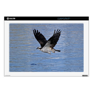 "Flying Fish Eagle Osprey Nature Photograph Decals For 17"" Laptops"
