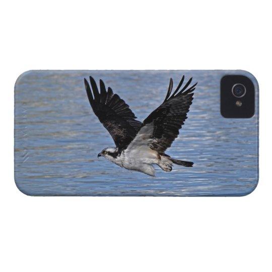 Flying Fish Eagle Osprey Nature Photograph iPhone 4 Case