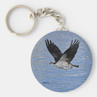 Flying Fish Eagle Osprey Nature Photograph Keychain
