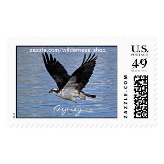 Flying Fish Eagle Osprey Nature Photograph Postage Stamp