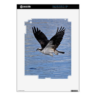 Flying Fish Eagle Osprey Nature Photograph Skins For iPad 2