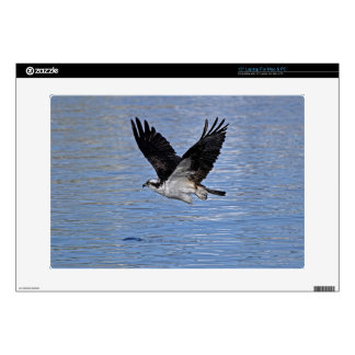 Flying Fish Eagle Osprey Nature Photograph Skins For Laptops