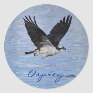 Flying Fish Eagle Osprey Nature Photograph Round Sticker