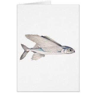 Flying Fish Exocoetidae Greeting Card