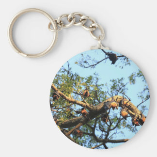 Flying fox fruit bat colony in trees keychain