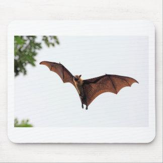 Flying fox fruit bat in sky mouse pad
