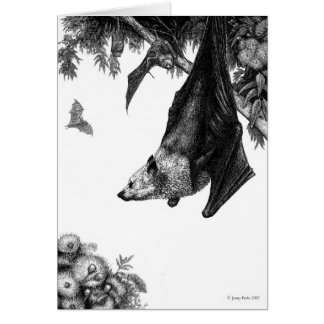 Flying Foxes Cards