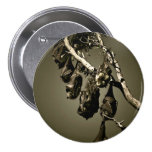 Flying Foxes Pinback Button
