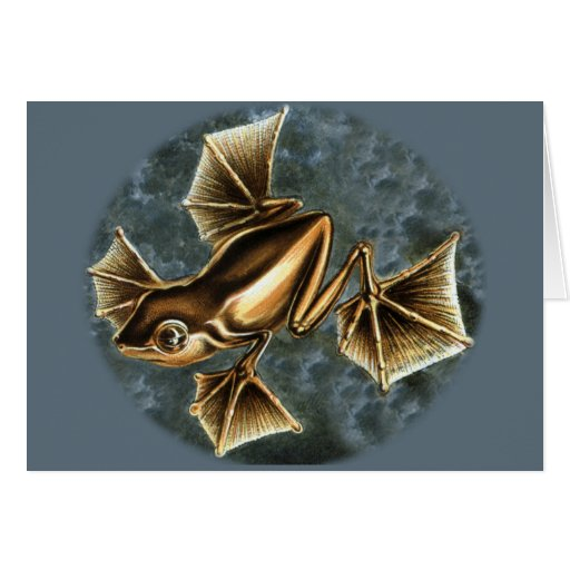 Flying Frog Cards