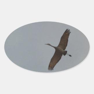 Flying Gliding Sandhill Crane Oval Sticker