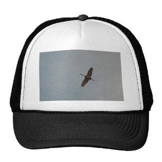 Flying Gliding Sandhill Crane Trucker Hat