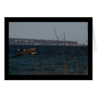 Flying Goose W/ Mackinac Island In Background Card