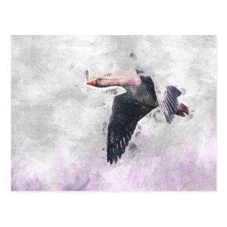 Flying Greylag Goose Post Card