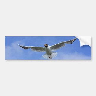flying gull bumper sticker