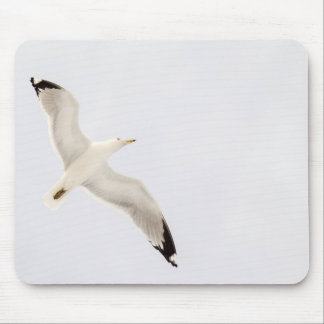 Flying Gull Mouse Pad