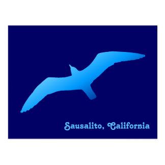 Flying Gull Postcard