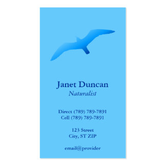 Flying Gull Profile Card