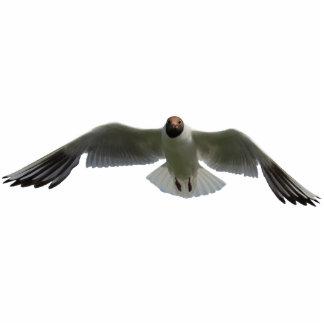 flying gull statuette