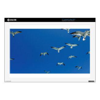 "flying gulls 17"" laptop decals"
