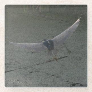 Flying Heron Glass Coaster
