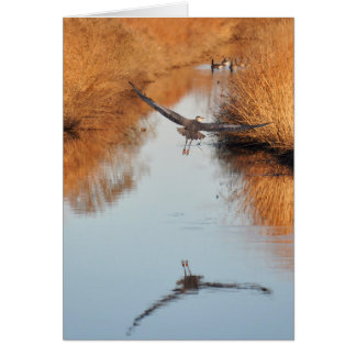 Flying Heron Reflection Card