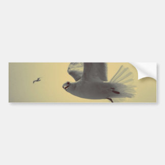 Flying High Bumper Stickers