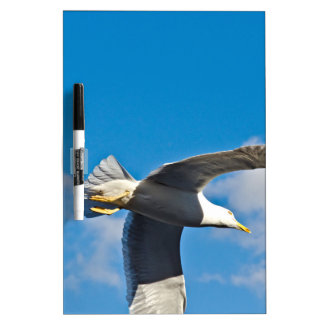 Flying high Dry-Erase board