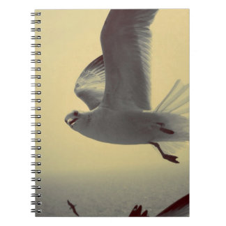Flying High Spiral Notebooks