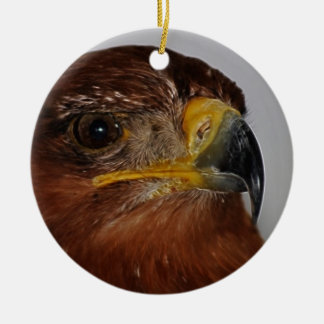 Flying high till I can touch the sky Double-Sided Ceramic Round Christmas Ornament