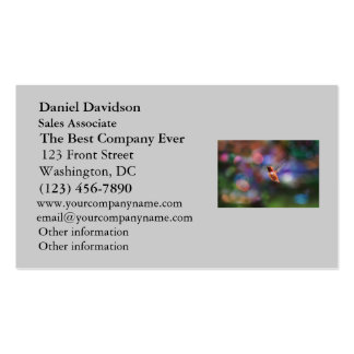 Flying Hummingbird and Colorful Background Business Card