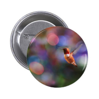Flying Hummingbird and Colorful Background Pin