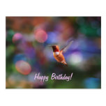 Flying Hummingbird and Colorful Background Postcard