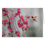 Flying Hummingbird and Flowers Greeting Card