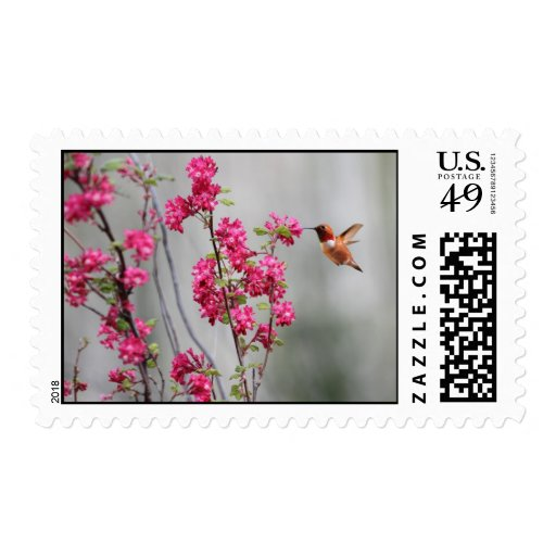 Flying Hummingbird and Flowers Postage Stamp